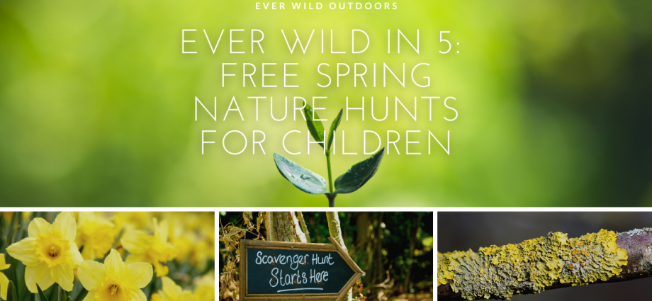Ever Wild in 5: free spring nature hunts for children